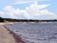 Blue Coral Shoreline