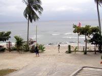 Palm Beach Resort Seascape