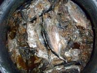 Sinaing na Tulingan - Batangas Food
