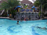 Blue Coral Adult Pool