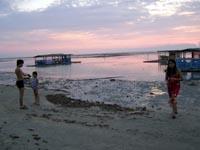 Low Tide at Matabungkay