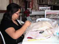 Cross-Stitch of Barong Tagalog